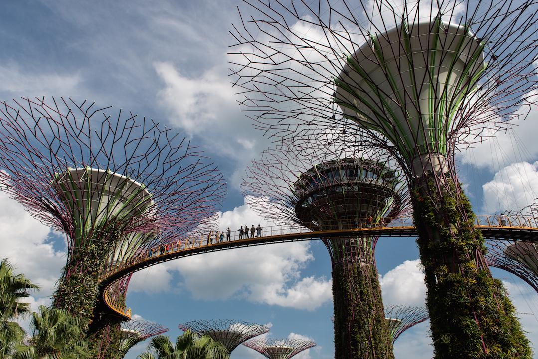Singapur&Malezija_(3) 17.2.2016-35