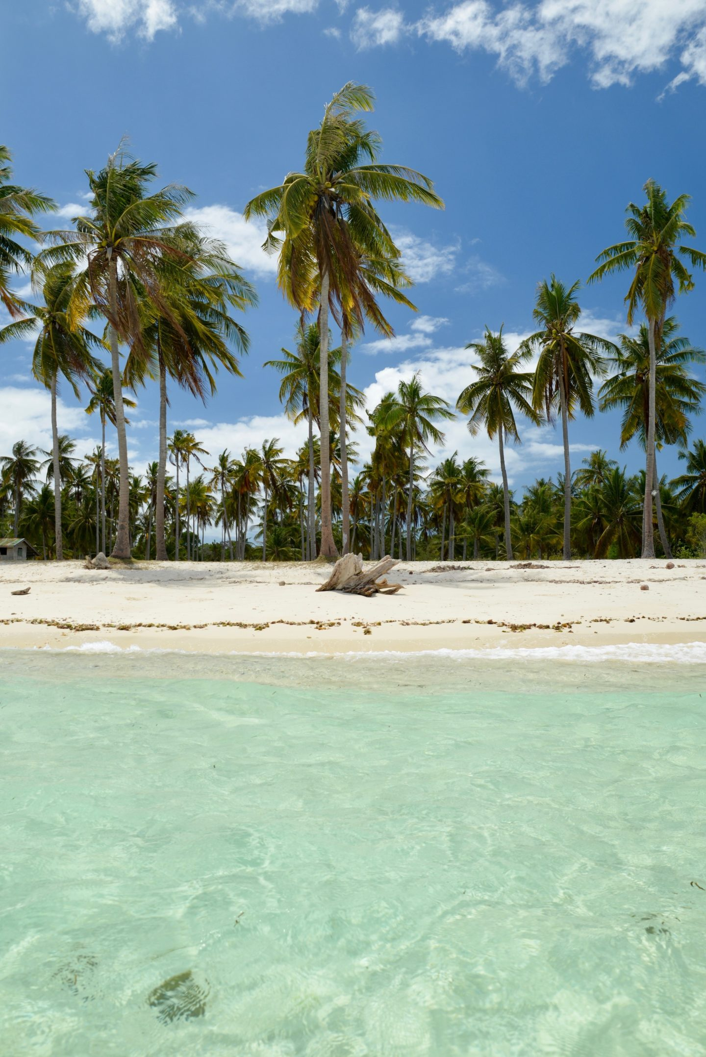Pamilacan Island Philippines